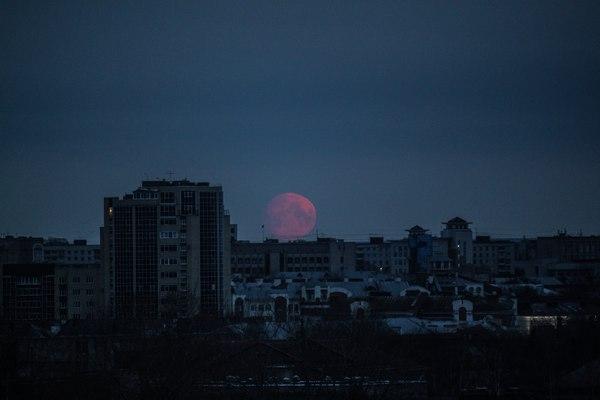 Кто в 5 утра встает, тот успевает вот такую луну увидеть... Вологда, луна, утро, фотография