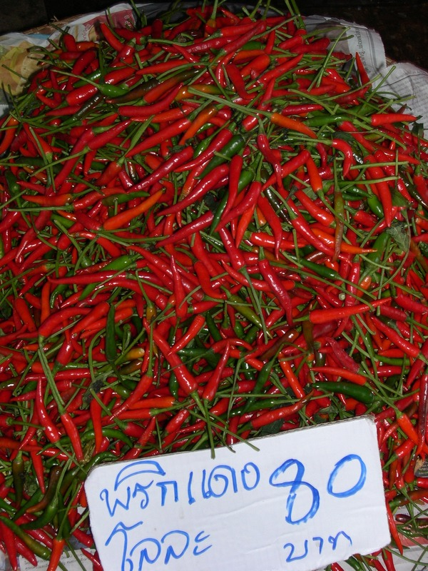 Red Hot Thai Chilli Peppers Перец чили, Выращивание дома, Тайский чили, Длиннопост