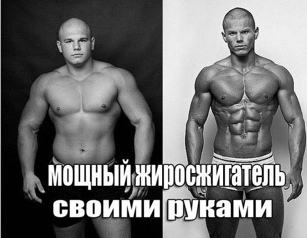 спортивное питание это все о нем