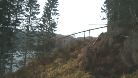 Падение дерева на высоковольтную линию