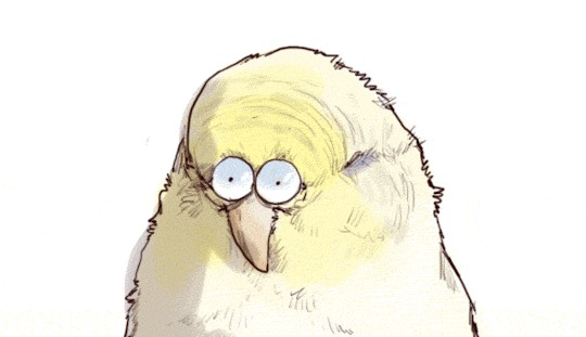 Пятачок Комиксы, Iguanamouth, Пятачок, Попугай, Гифка, Длиннопост