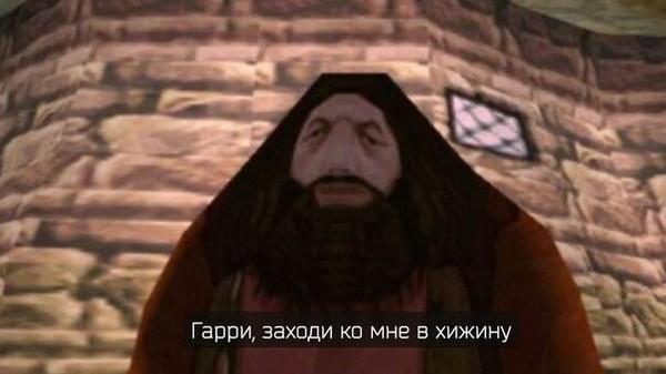 Заходи, поколдуем Гарри Поттер, Хагрид, Видеоигра
