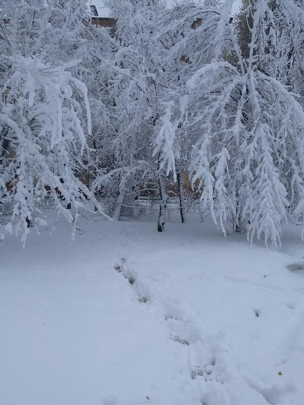 Днепр(Днепропетровск), как всегда комунальщики были не готовы Снег, Апрель, Днепропетровск, Длиннопост