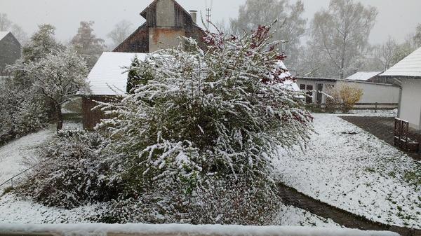 А в это время в Баварии Германия, Зима близко, Погода