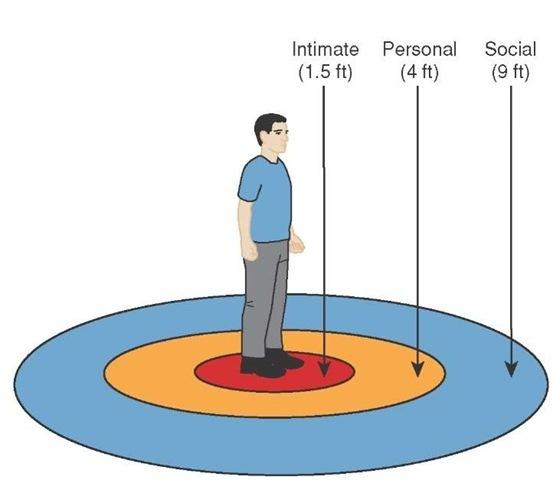 18 дурацких правил, как легко и просто стать другим человеком. День 10-й. психология, 18 дурацких правил, Лига психотерапии, длиннопост