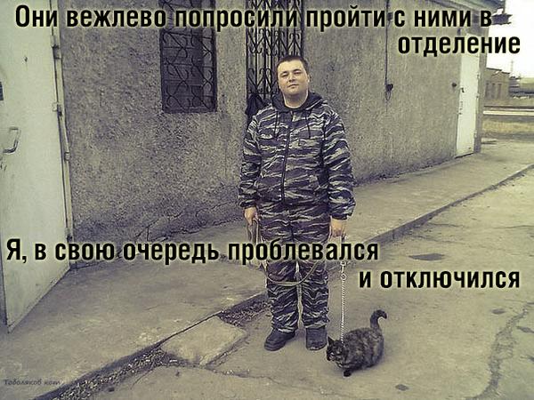 Один день из жизни кота. True stories кот, Комиксы, Истории, длиннопост