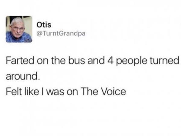 Это голос Пук, Голос