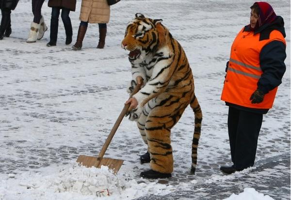 Как я заставил работать ЖЭК своего района, да так, что они пошли искать меня в полицию :) ЖЭК, Москва, наш городок, коррупция, Жилищник, троллинг, угар, длиннопост