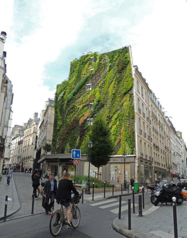Вертикальные сады, превращающие скучные стены домов, в зеленые картины и лужайки, стремительно набирают популярность по всему миру. дизайн, город, благоустройство, креатив, зелень, экстерьер, длиннопост