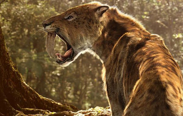 5 вымерших животных, которые могут воскреснуть Редкие животные, История, Клонирование, Длиннопост