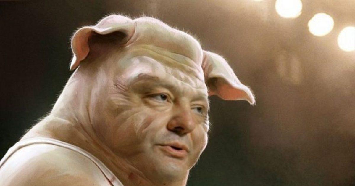 Мнение: Праздник свиньи