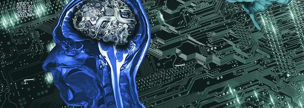 Хакнуть мозг. Мир погружается вглубокие нейронные сети КШ, Кот Шредингера, интернет, нейронные сети, хакатон, интервью, длиннопост