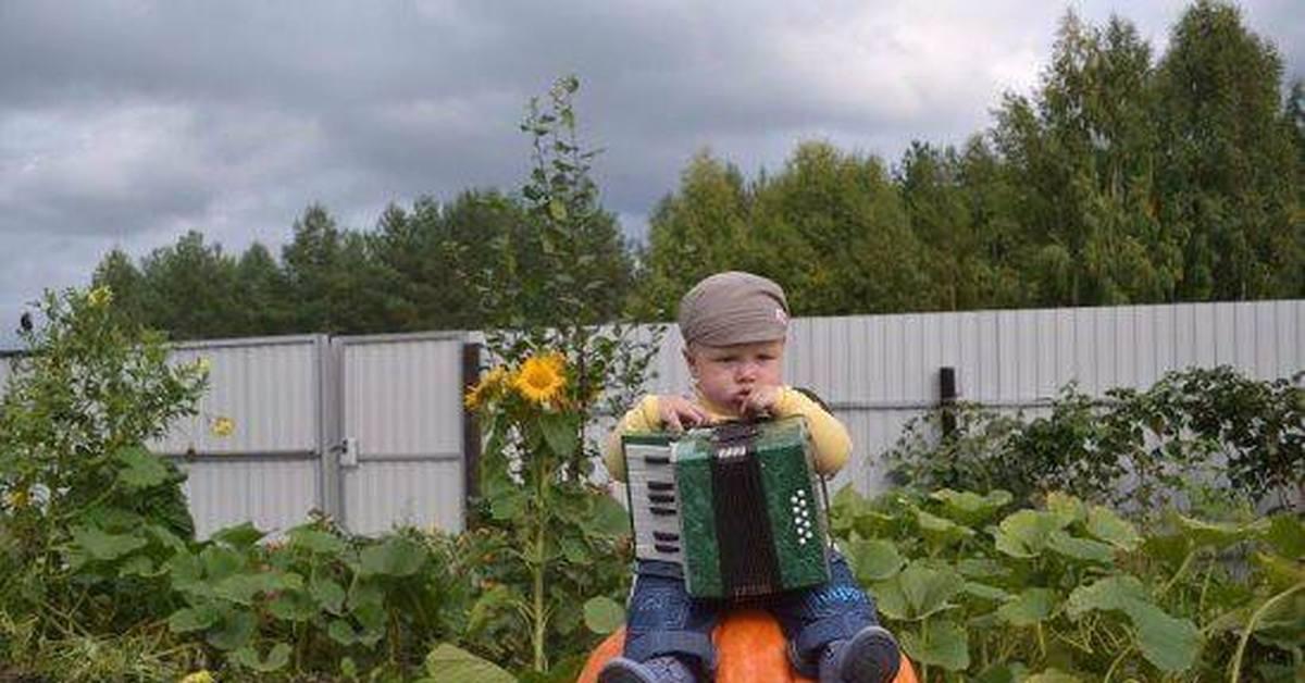 Муз, прикольные картинки по работе в огороде