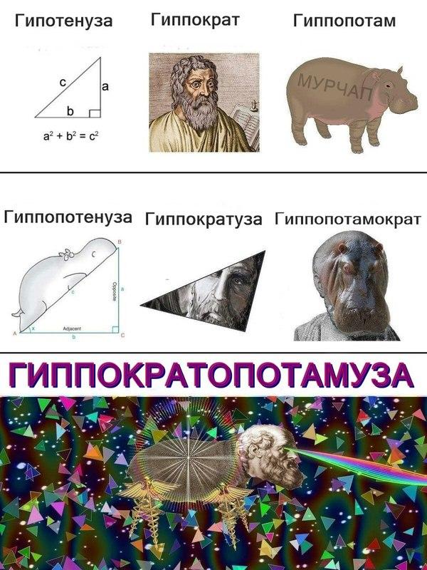149382614912638044.jpg