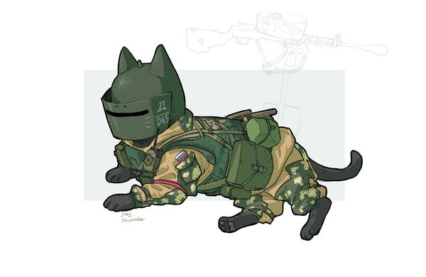 ОмоноКоты кот, милитари, Tom Clancy's Rainbow Six Siege