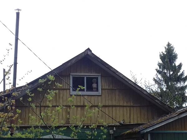 Дом с куклой Кукла, Дача, Крипота, Невеста чаки