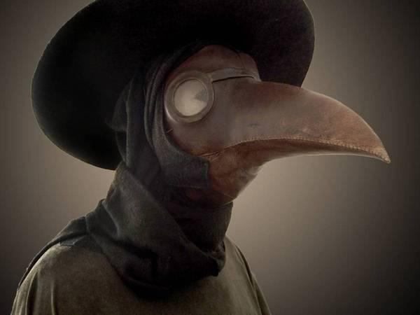 Дядька Невермор Тасмания, Австралия, Птицы, Омская птица, Всё как у зверей, Все как у зверей
