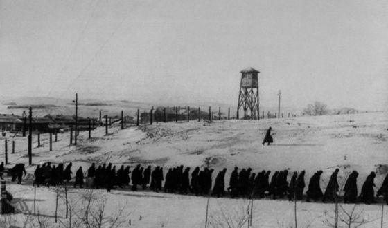 Бунт в Степлаге 1954 г. гулаг, Украина, бунт, Кенгир, 1954, Мифы, Политика, длиннопост