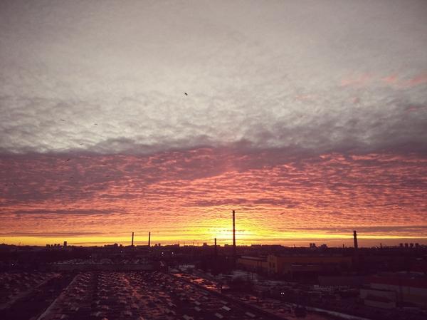 Закаты Битва закатов, Фотография, Закат, Санкт-Петербург, Ленинградская область, Длиннопост