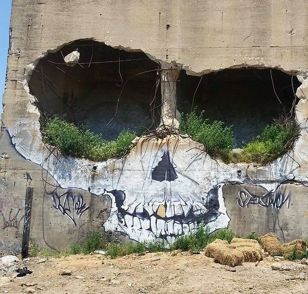 Череп фотография, стрит-арт, Нью-Йорк, DAE Crew, череп