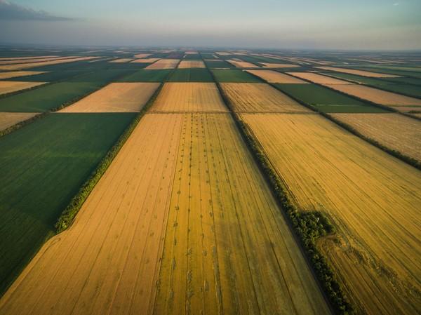 Поля в российской глубинке фотография, поле, Кубань, бескрайняя, Россия
