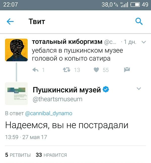 Когда действительно переживают за посетителей twitter, скриншот, мат, Пушкинский музей
