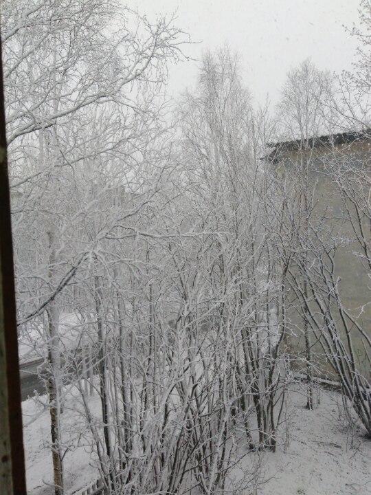 Мурманская область привет. погода, мурманск, Ковдор, Снег