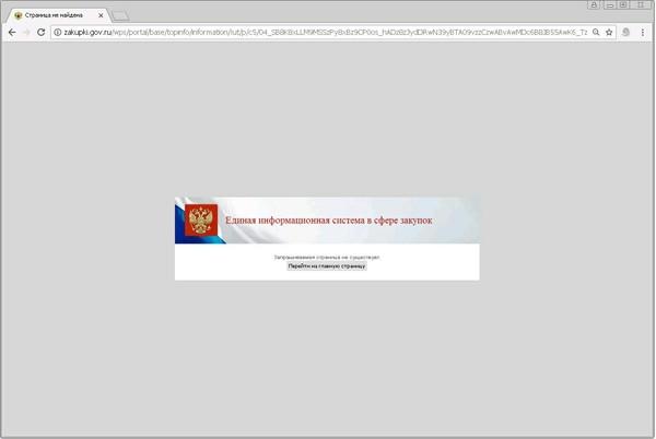 Особенности сайта госзакупок Госзакупки, Торги, Ошибки на сайте