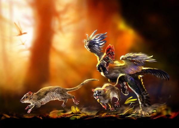 Аллотерии — совсем другие звери наука, эволюция, млекопитающие, длиннопост, палеонтология, биология