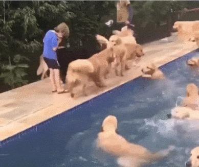Лучшая вечеринка у бассейна, которую я видел))