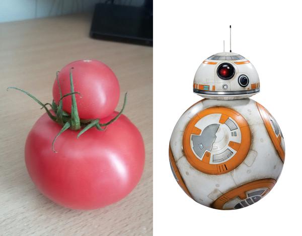 Когда хочешь быть как bb8, но ты всего-лишь помидорка