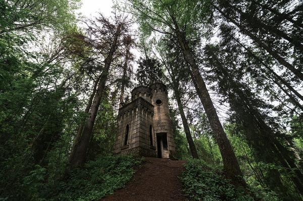 Остатки заброшенной усадьбы в лесах новгородской области
