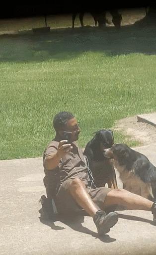 Соседским собакам нравится этот почтальон