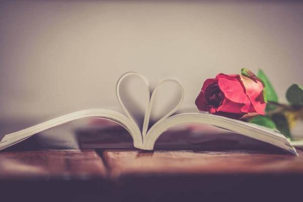 Личное публично: кого любили писатели Писатель, любовь, любовь великих писателей, факты, длиннопост