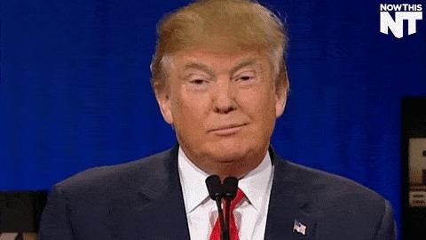 """Трамп придумал соорудить на границе с Мексикой самоокупающуюся """"солнечную стену"""" Дональд Трамп, Стена, Политика, Новости, Гифка"""