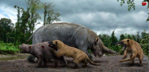 Мир после Динозавров, часть вторая: Хищники Интересное, познавательно, наука, кайнозой, постапокалипсис, млекопитающие, прошлое, палеонтология, длиннопост