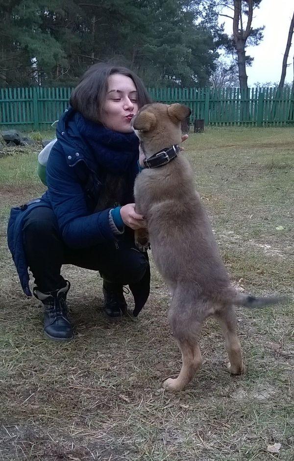 Пост огромной любви или Зацените мою собаку))) собака, грибы, фотография, домашние животные, длиннопост