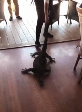 Работа в Австралии