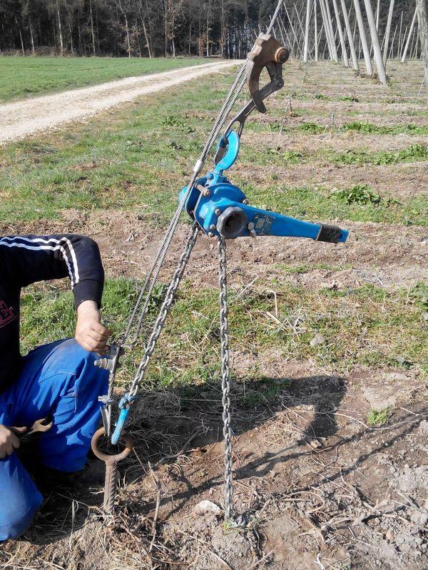 Хмелеводство - как это делается в Германии. Часть 1. Хмель, Хмелеводство, Германия, Растениеводство, Сельское хозяйство, Длиннопост
