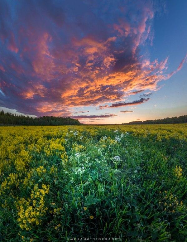 Закат в Карелии фотография, карелия, Карелия  моё  лето  природа, прогулка, Блог, видео