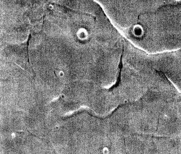 НАСА нашло новое лицо на Марсе марс, лицо, космос