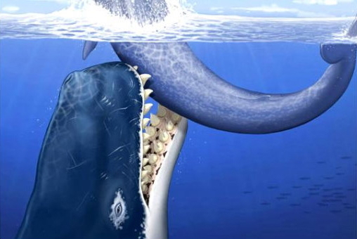 Левиафан Мелвилла Палеонтология, Левиафан Мелвилла, Доисторические животные, Длиннопост