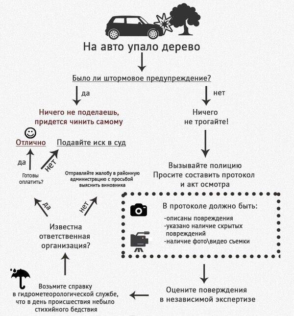 Полезная информация или почему МЧС чуть что объявляет штормовое предупреждение Авто, Дерево, Хреновая погода, Ураган, Схема, Штормовое предупреждение