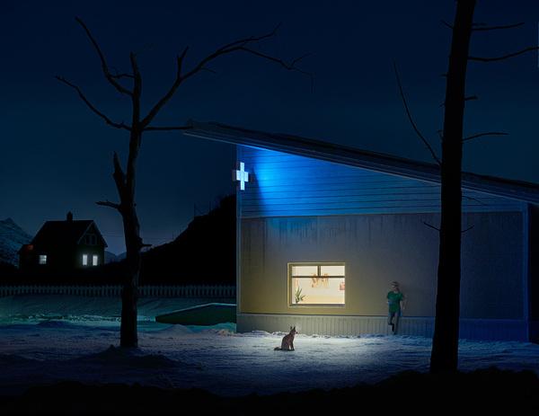 Ночная смена. фотография, ночь, Животные, медпункт, врачи