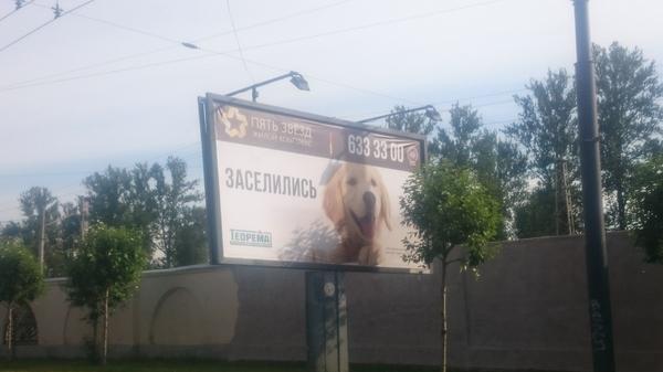 Добрая собака Собака, Билборд, Реклама, Суицид
