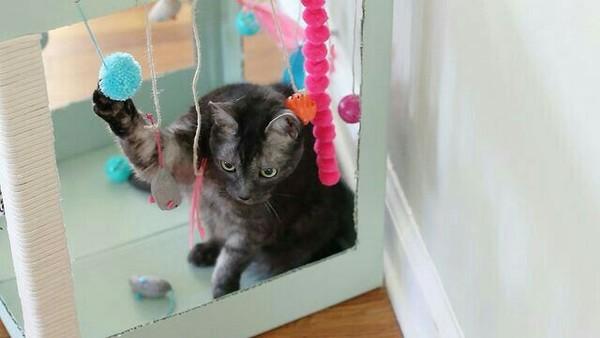Домик для кота своими руками идея, дом для кота, своими руками, длиннопост, кот