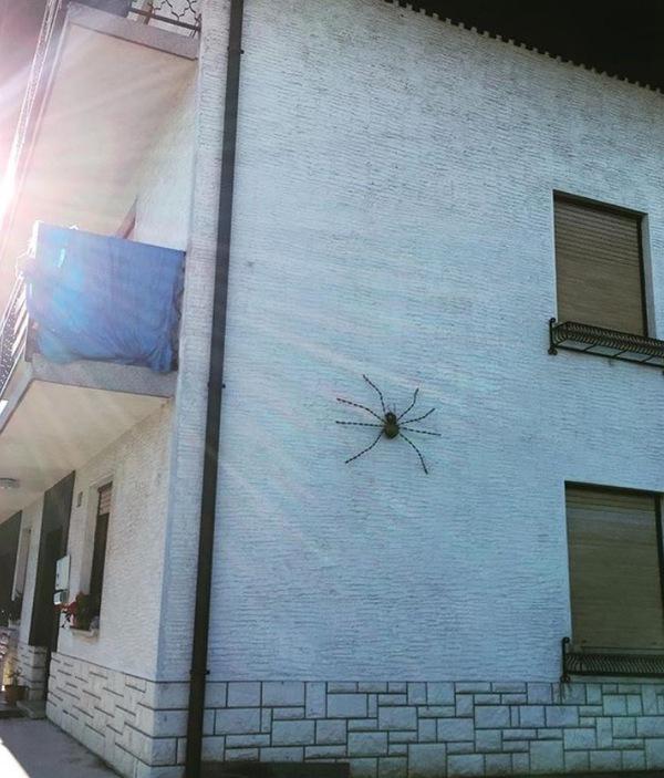 Мне кажется, это теперь его дом Кирпичи, Очень много кирпичей, Неведомая хрень, Kill it with fire, Дом, Паук