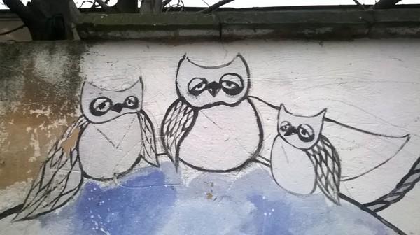 Понедельничные совы сова, невысыпание, Понедельник, Урбан арт