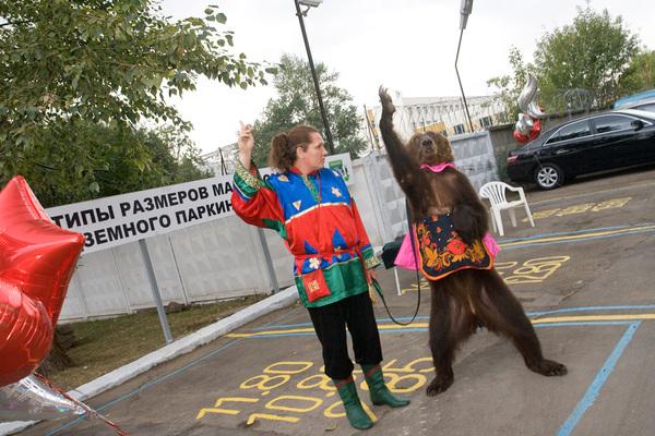 """На открытии ЖК """"Царицыно"""" зрители были возмущены обращением с медведицей Петиция, защита животных, помощь животным"""