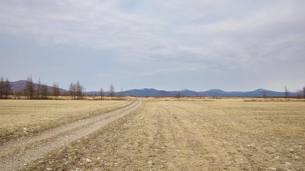 Проспорил или растим траву на корм скотине спор, фермер, колхознапрасныйтруд, длиннопост